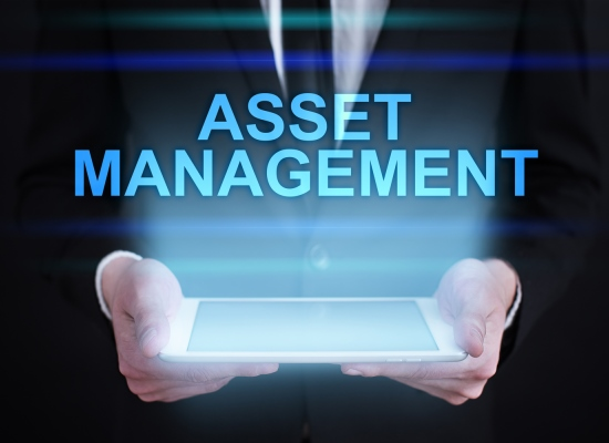 Asset management550x400